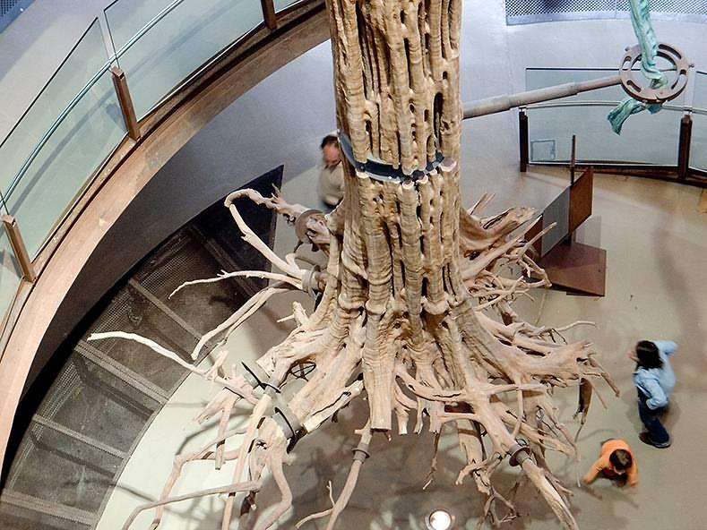 CosmoCaixa Science Museum - Practical information, photos and videos - Barcel...