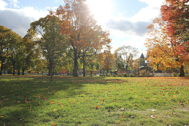 Cambridge Common Practical Information Photos And
