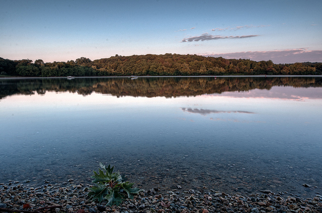 Parts Of Jamaica >> Jamaica Pond - Practical information, photos and videos ...